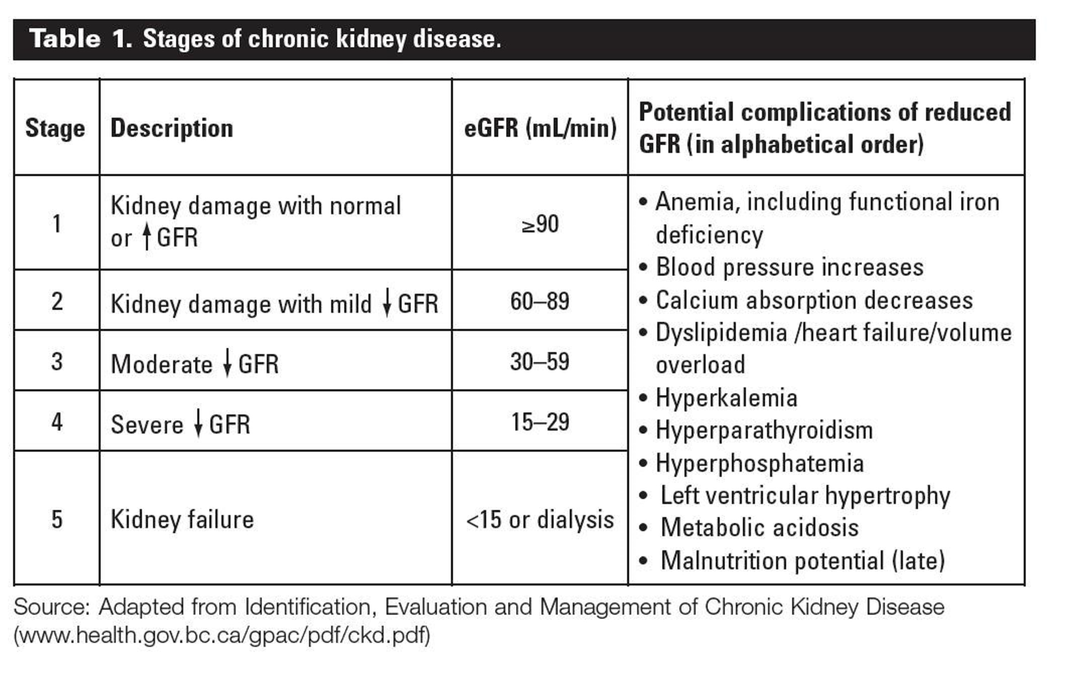 Overview Of Chronic Kidney Disease Stages Shift Your Fate